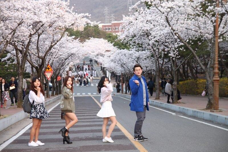 Du học trường đại học kỹ thuật Daegu