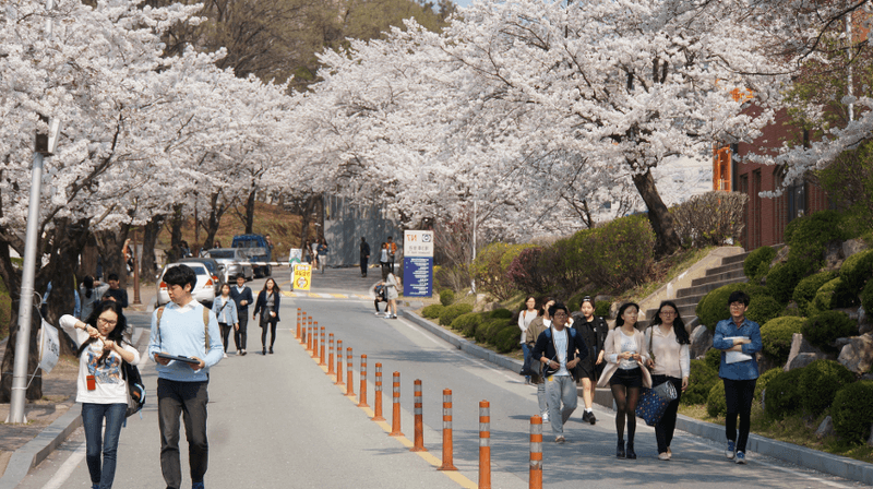 Tìm hiểu Đại học Quốc gia Changwon ( CWNU )